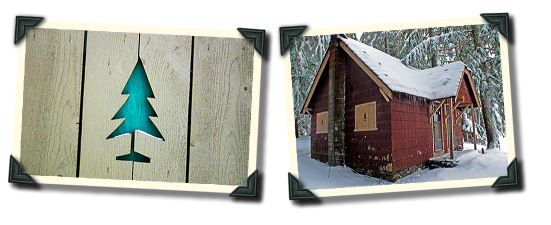 Cabin-2-Collage